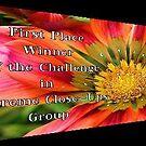 Banner for a Challenge by Esperanza Gallego