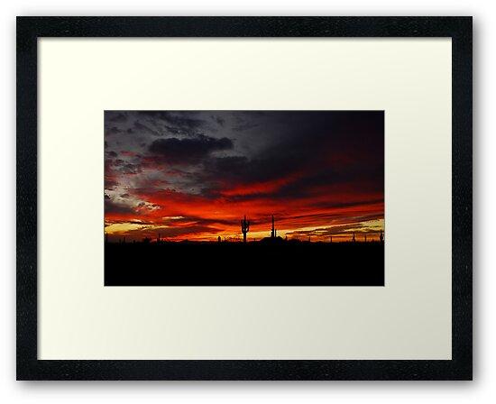 A Red Evening  by Saija  Lehtonen