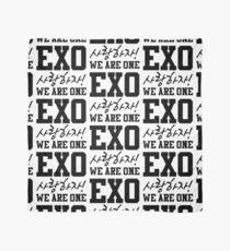 'EXO Saranghaja! We Are One' Scarf