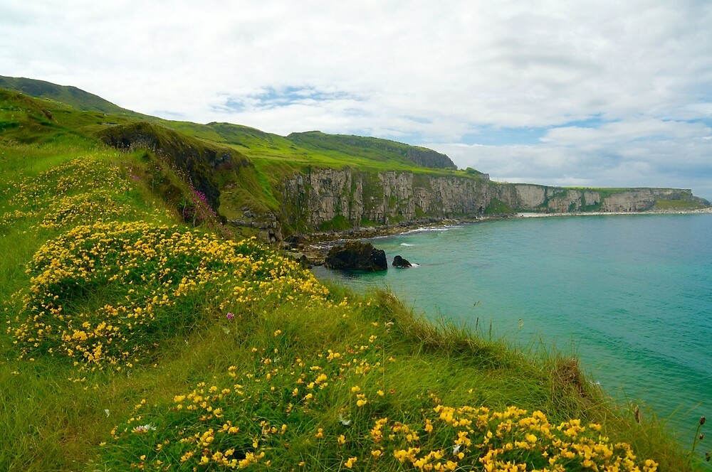 Carrick-a- Rede by Gina Dazzo