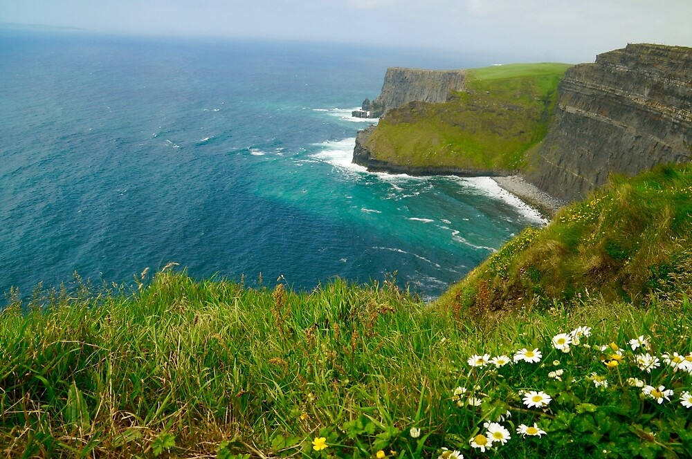 Cliffs Of Moher by Gina Dazzo
