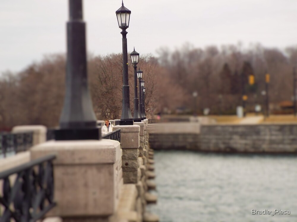 The Lamps of Life by BradleyPlesa