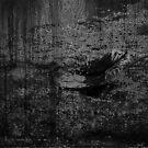 untitled by eshirin