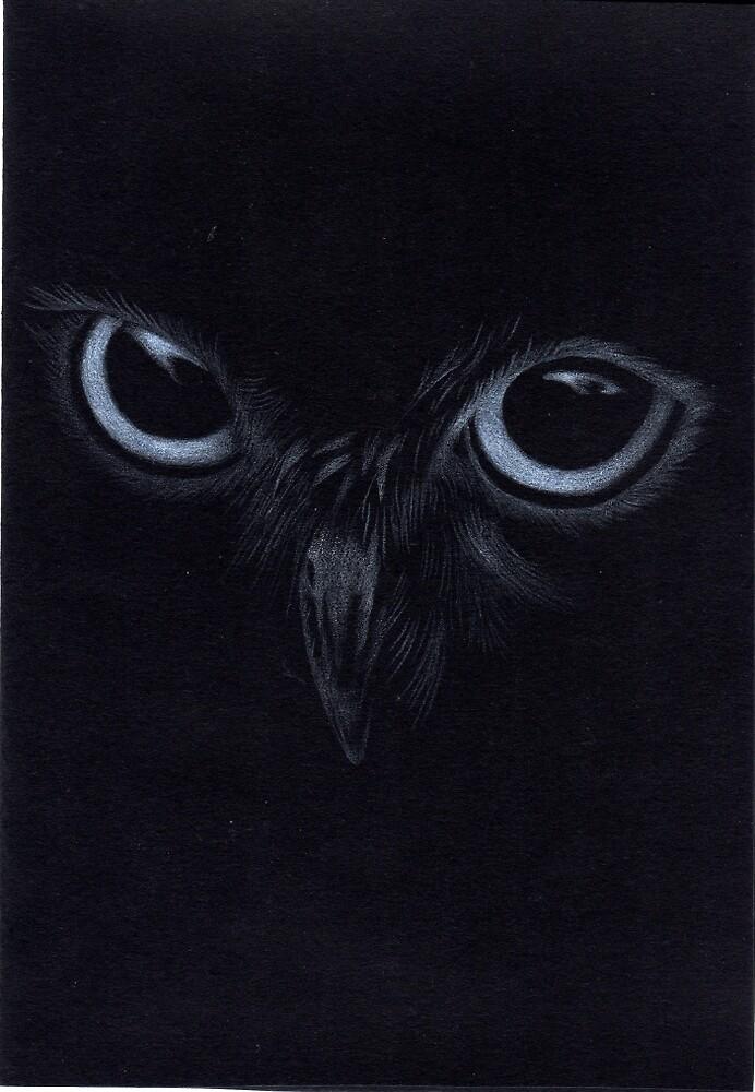 owl by Rebecca O'Toole