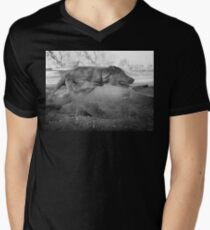 Dogs with game face on .33 Men's V-Neck T-Shirt