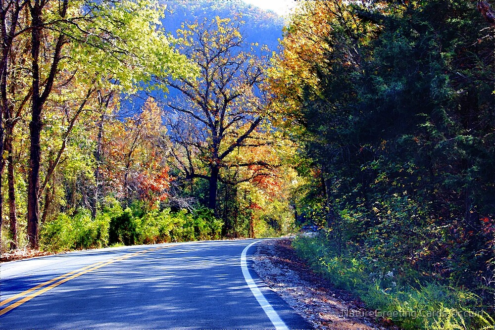 Autumn Country by NatureGreeting Cards ©ccwri