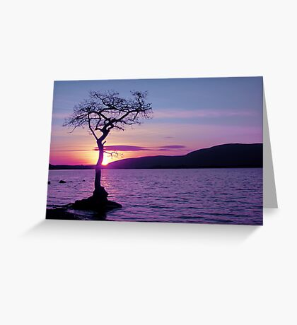Don't let the Sun go down on Tree. Greeting Card