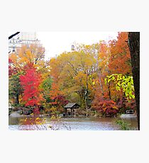 Hazy Autumn day in Central Park, New York City Photographic Print
