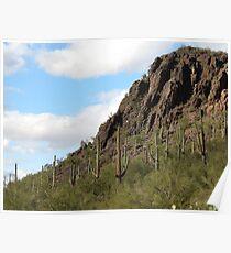 Mother Nature in Marana,AZ Poster