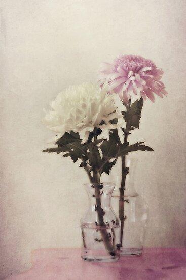 closely by Priska Wettstein