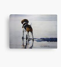 Beagle Reflections Canvas Print