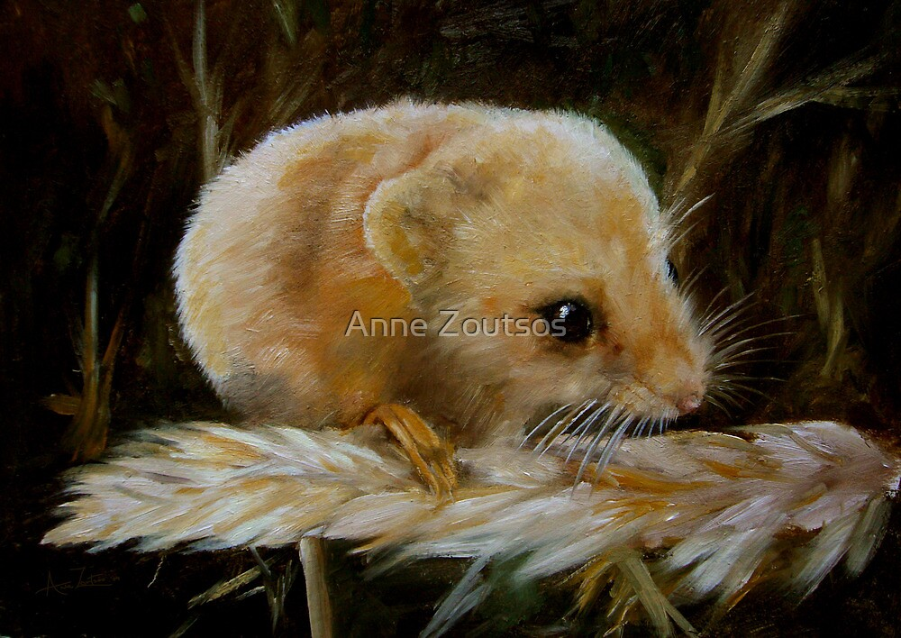 Harvest Mouse by Anne Zoutsos