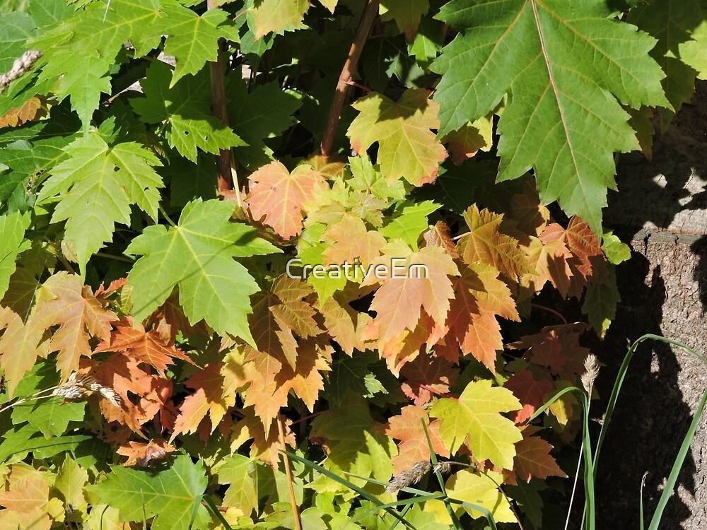 Autumn Leaves (Twycross) by CreativeEm
