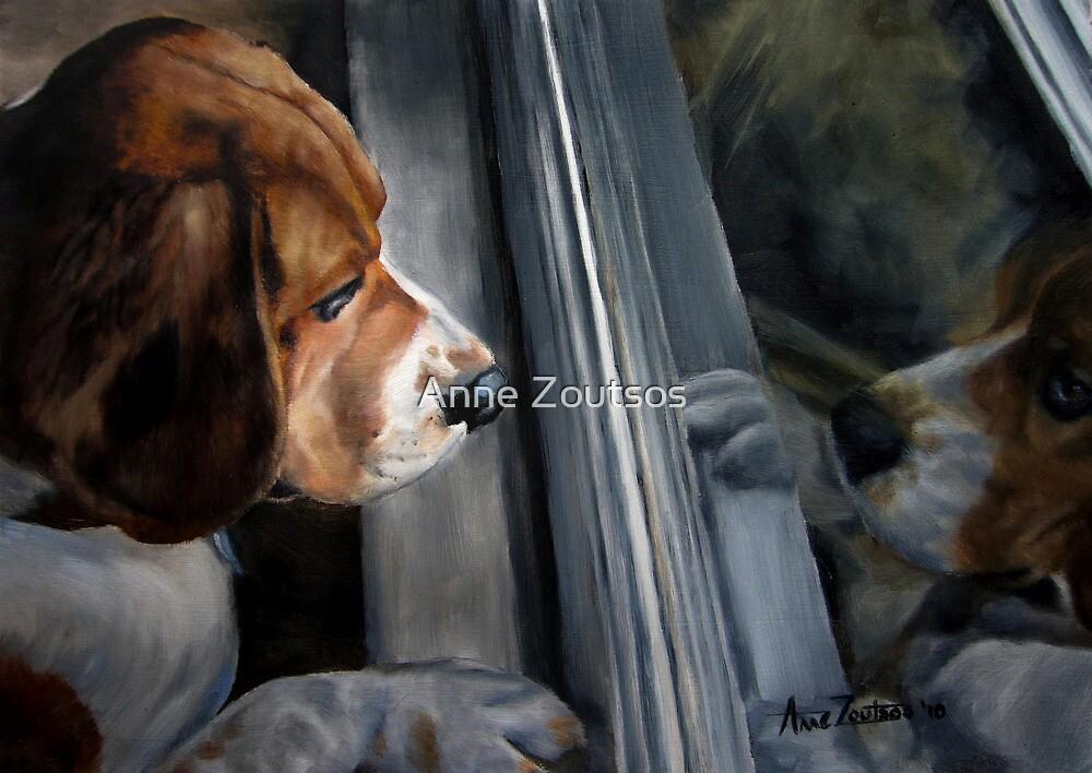 Beagle's Window by Anne Zoutsos
