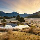 Early Morning, Mountain River, Tasmania by Chris Cobern