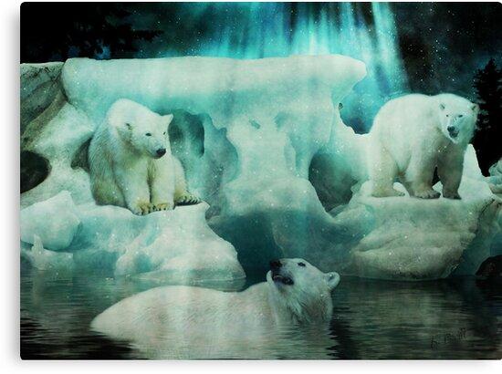 Polar Playground by KBritt