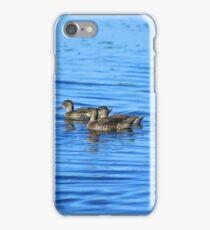 Swimming Ducks iPhone Case/Skin
