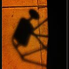 Shadow Bug by Richard G Witham