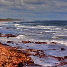 Sea View - Bamburgh by Trevor Kersley