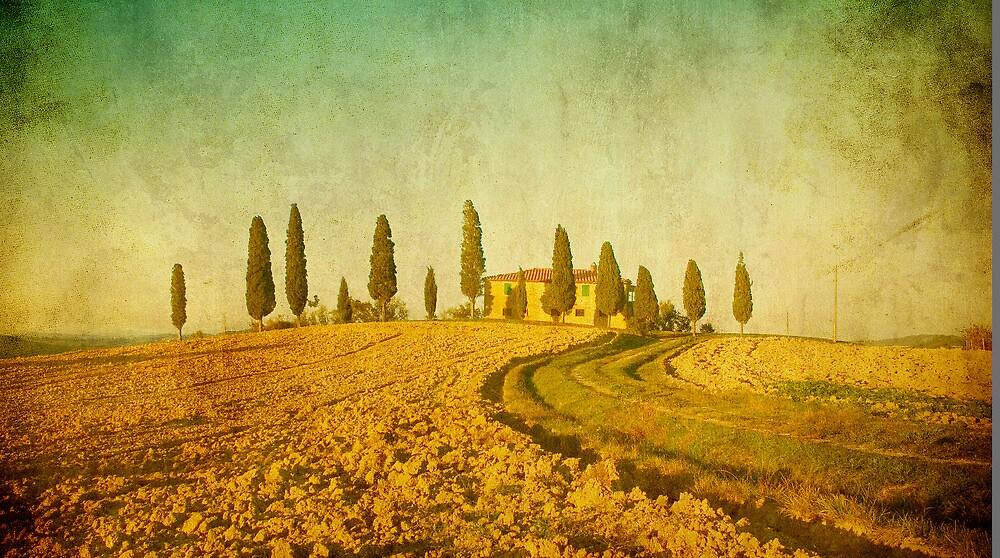 Vintage Tuscan landscape by javarman