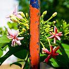 Flowers Versus Iron by vanyahaheights