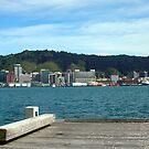 Wellington Pier Harbour View by jezkemp