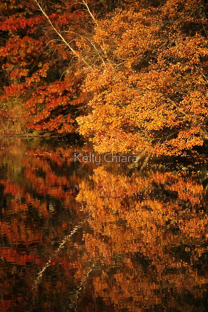 Burnished Reflections by Kelly Chiara
