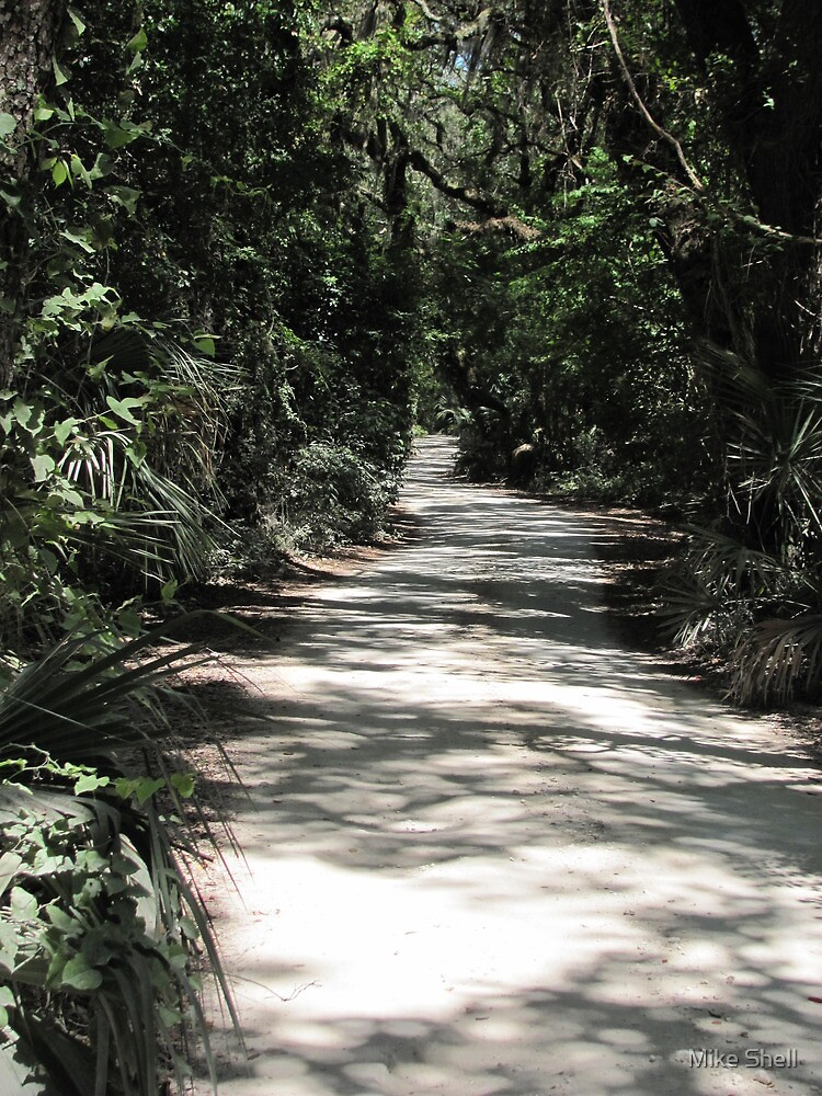 Timucuan path by Mike Shell
