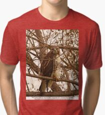 Red-Tailed Hawk as wise as Owl Tri-blend T-Shirt