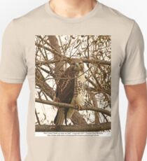 Red-Tailed Hawk as wise as Owl Unisex T-Shirt