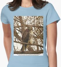 Red-Tailed Hawk as wise as Owl Womens Fitted T-Shirt