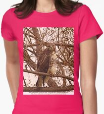 Red-Tailed Hawk as wise as Owl Women's Fitted T-Shirt