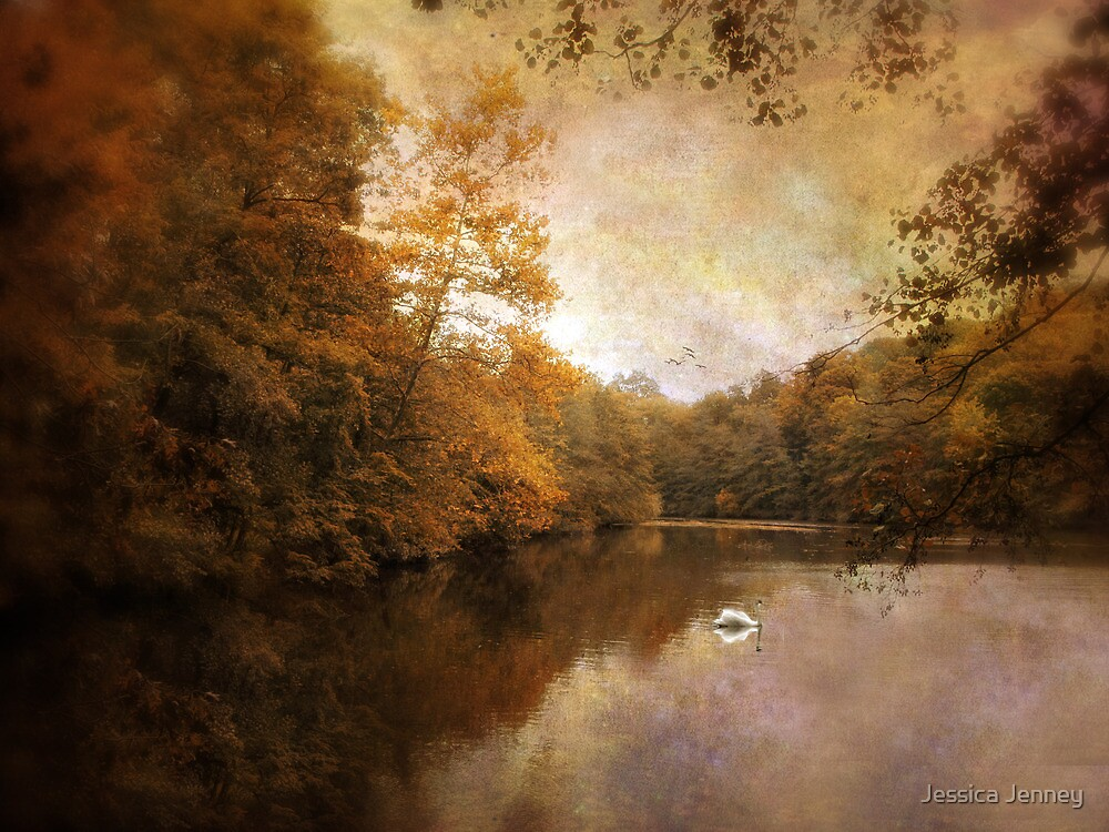 Swan Song by Jessica Jenney