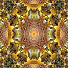 GoldPassEsq iP4 by Hugh Fathers