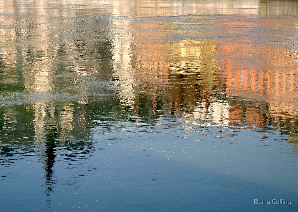 Rhone river reflection by Barry Culling