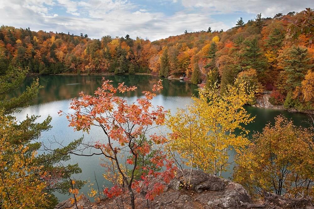 Overlooking Pink Lake by Eunice Gibb