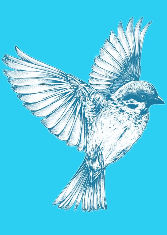 Bird drawing in blue by mosfunky