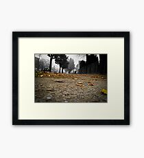 The golden road into oblivion Framed Print