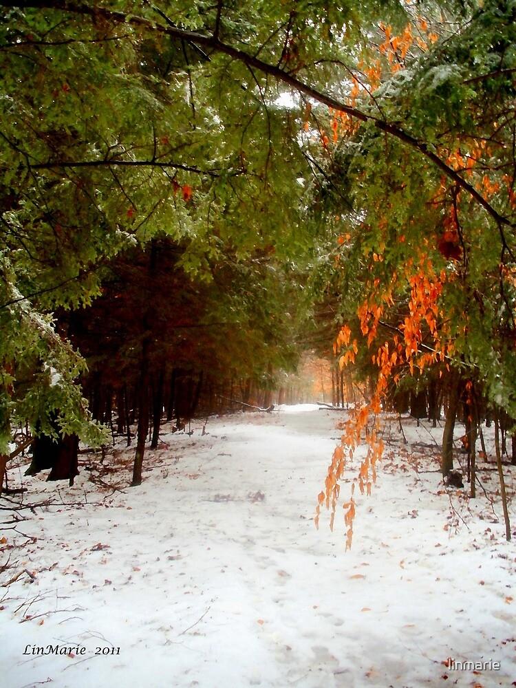 Winterfall.. by linmarie