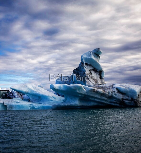 Floating Iceberg by Béla Török