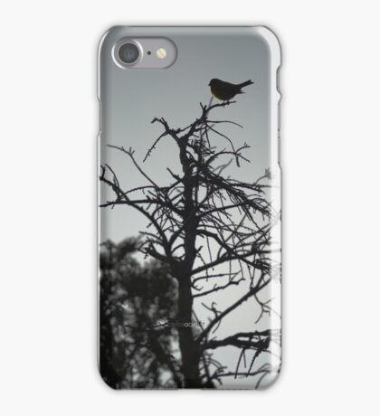 Carcasa iPhone verdecillo / iPhone case serin iPhone Case/Skin
