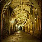 Traveling through Collegiate Gothic Arches by Debra Fedchin