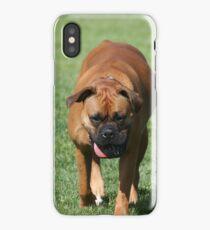 Boxer Dog iPhone Case