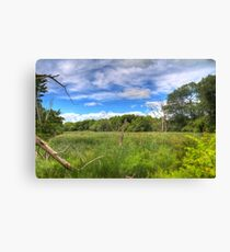 Waterfront Trail HDR I  Canvas Print