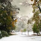 An Early Winter by Jessica Jenney