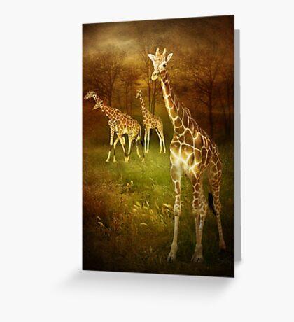 African Sun - Giraffe Greeting Card