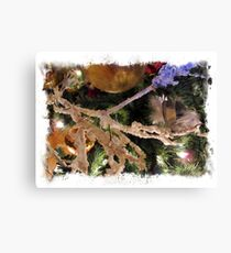 Framed Holiday Season Decorations  ~ Frosty Branches & Gold Baubles w/ Xmas Lights ~  Christmas Tree Ornaments Canvas Print