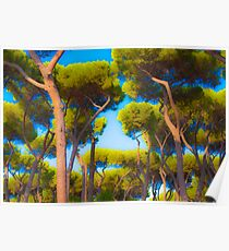 Trees, Villa Borghese, Rome Poster