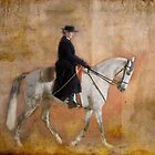 Lusitano by Wendy Lilygreen