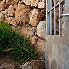 vineyard door, Cinque Terre, Italy by johnnabrynn
